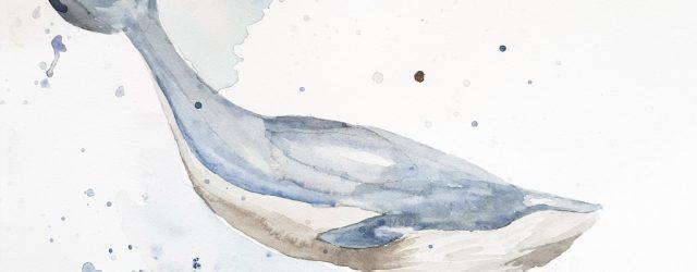 Nybörjarförsök att måla valar i akvarell